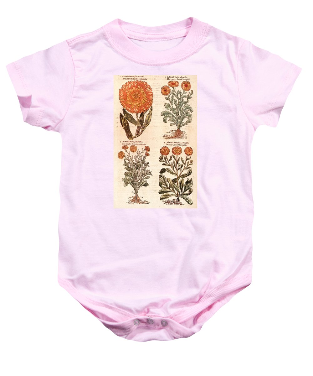 1597 Baby Onesie featuring the photograph Marigolds by Granger