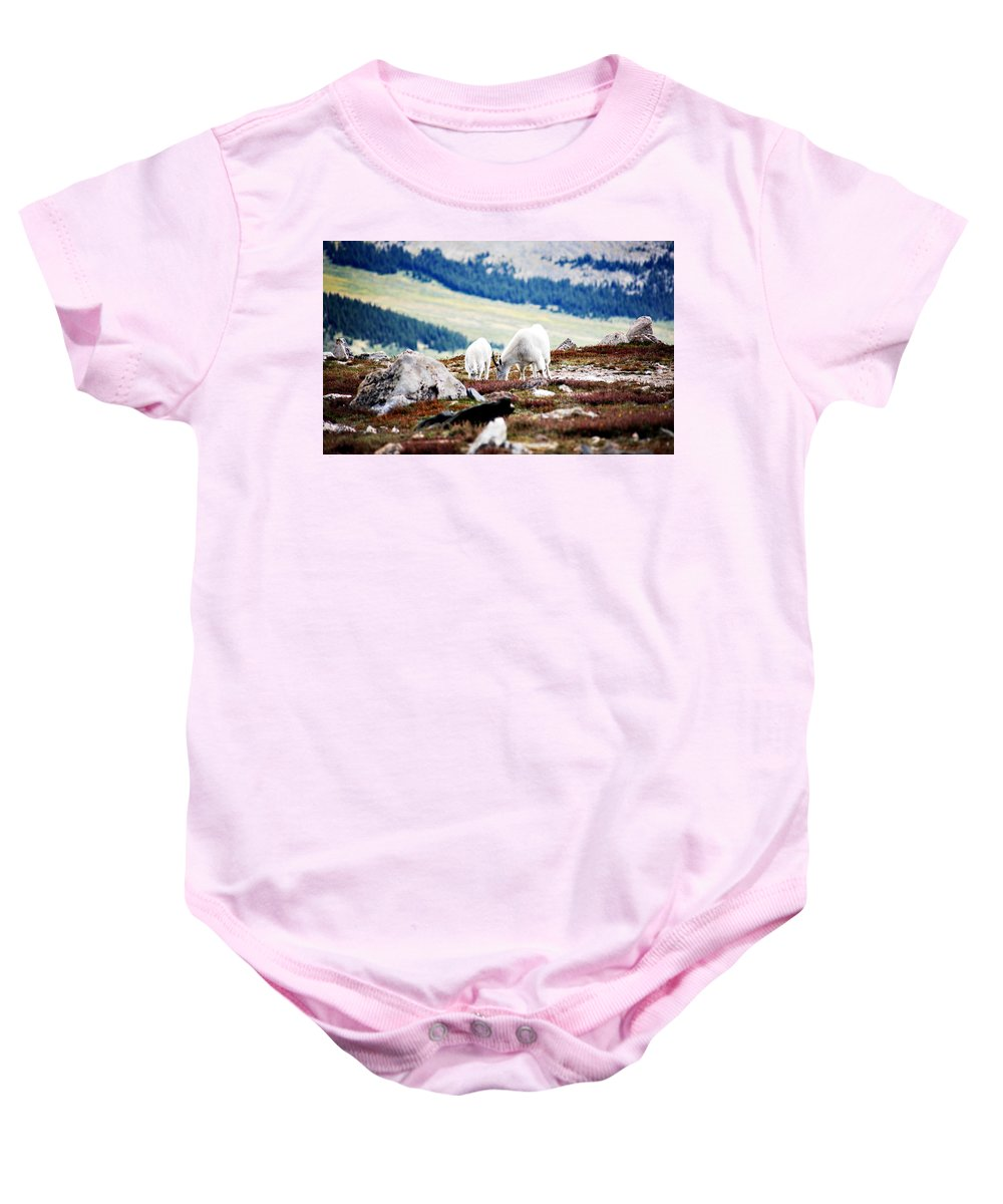 Animal Baby Onesie featuring the photograph Mountain Goats 2 by Marilyn Hunt
