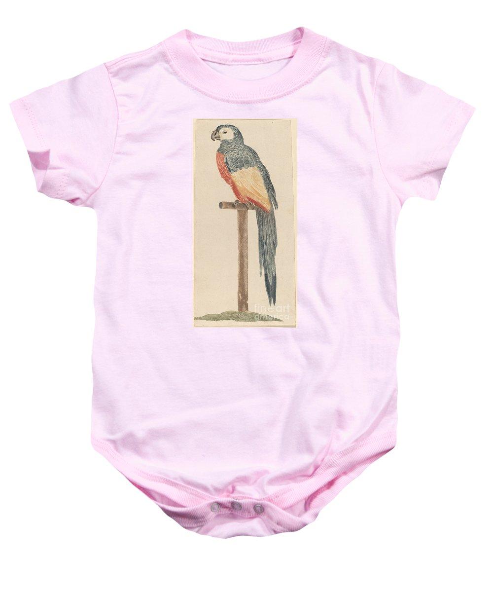 Baby Onesie featuring the drawing Parrot by Workshop Of Johann Teyler
