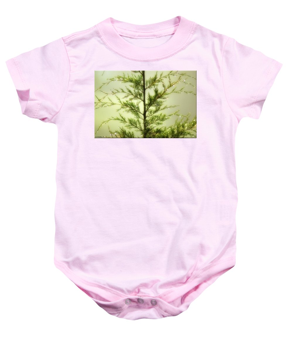2d Baby Onesie featuring the photograph Pine Shower by Brian Wallace