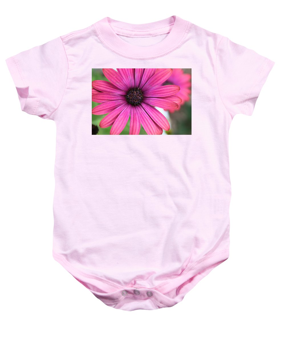 Daisy Baby Onesie featuring the photograph Pink Daisy by Lauri Novak