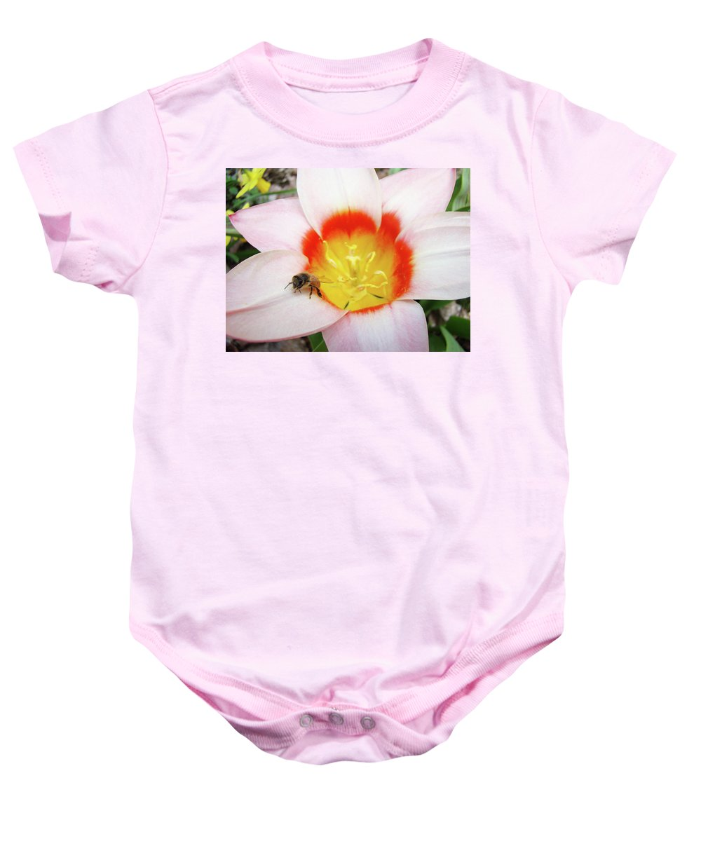 Tulip Baby Onesie featuring the photograph Pink Tulip Flower Orange Art Prints Honey Bee Baslee Troutman by Baslee Troutman
