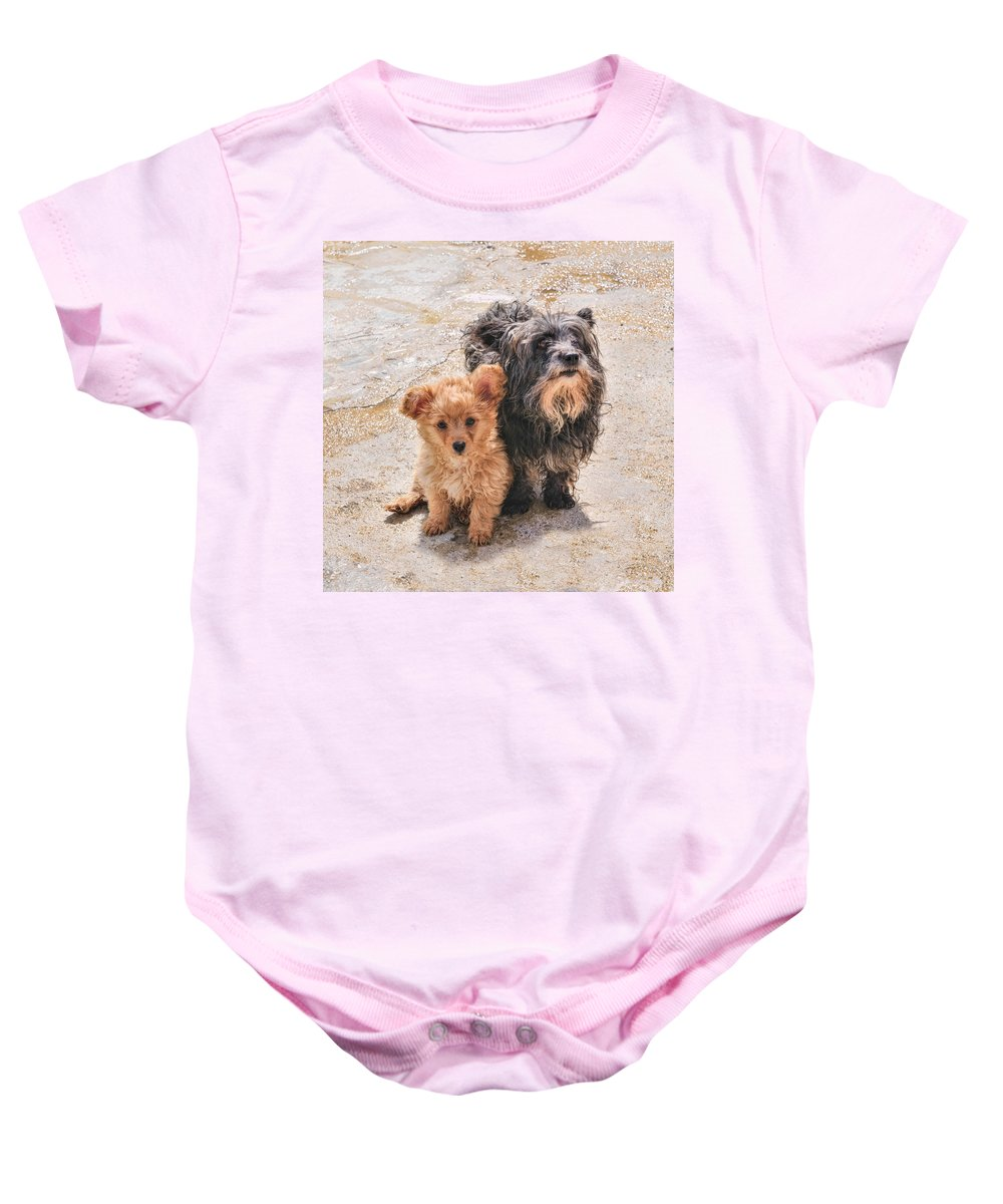 Puppy Baby Onesie featuring the photograph Please Take Me Home by Roy Pedersen