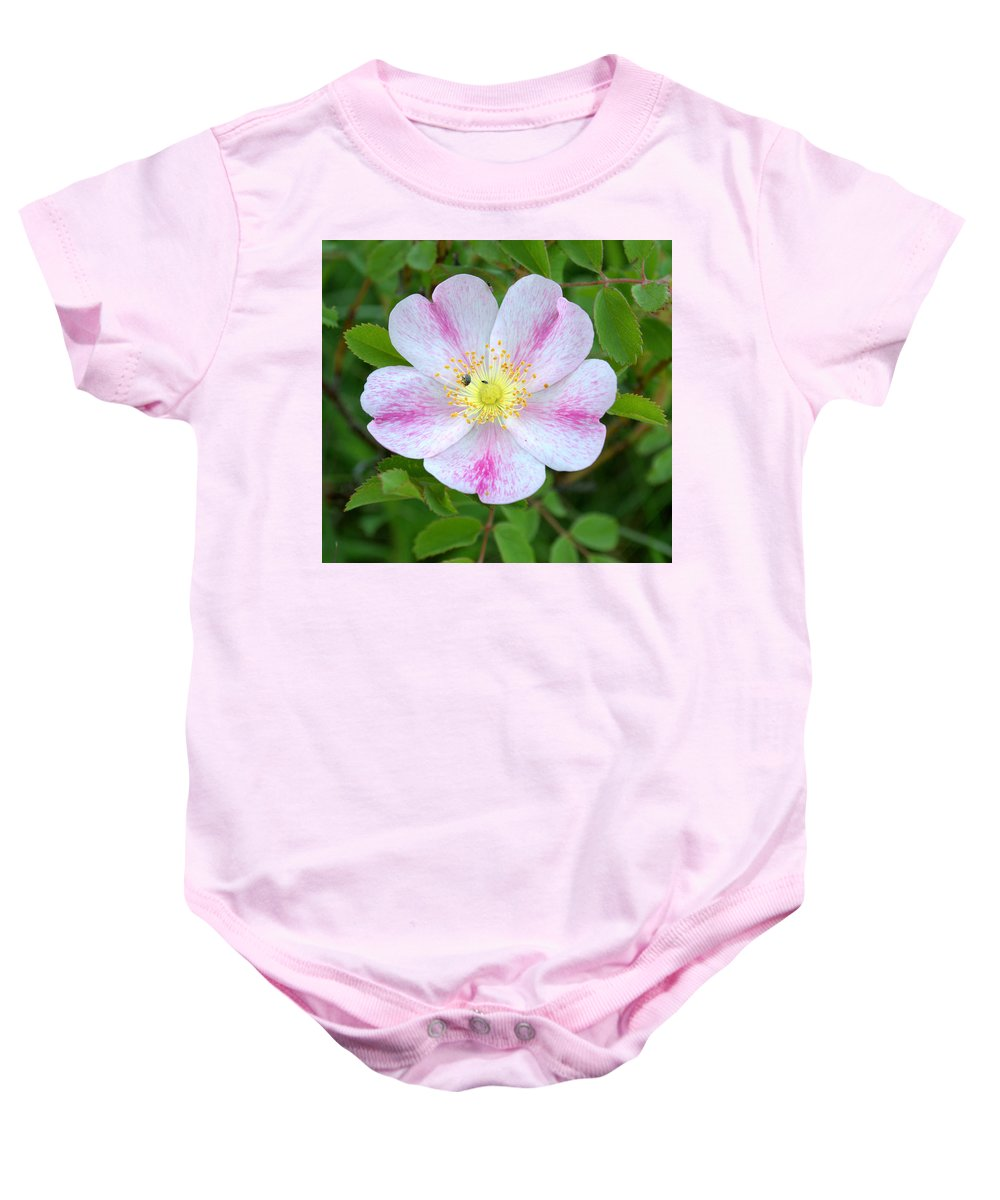 Flower Baby Onesie featuring the photograph Prairie Rose by Mark Hudon
