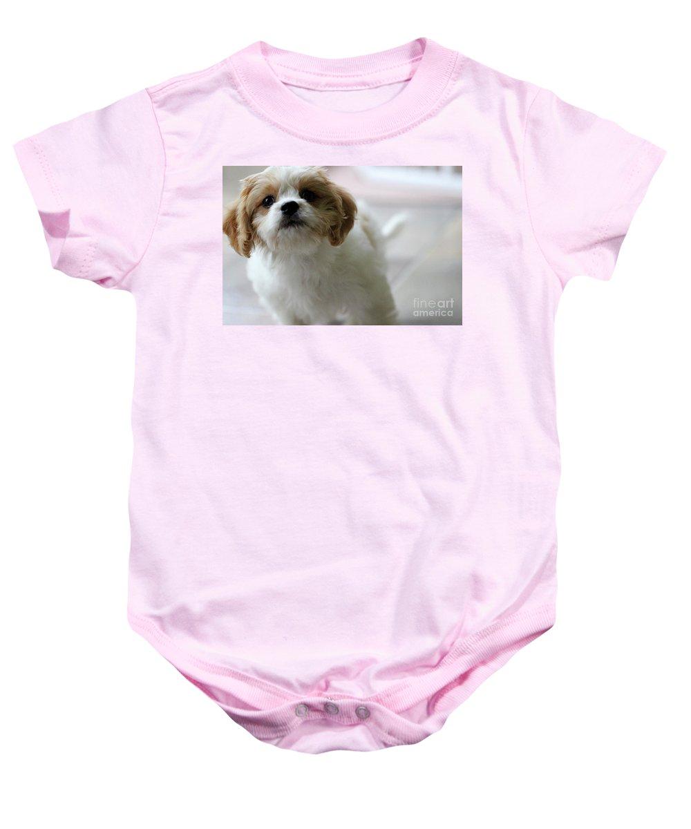 Puppy Baby Onesie featuring the photograph Puppy Sunshine by Karen Adams