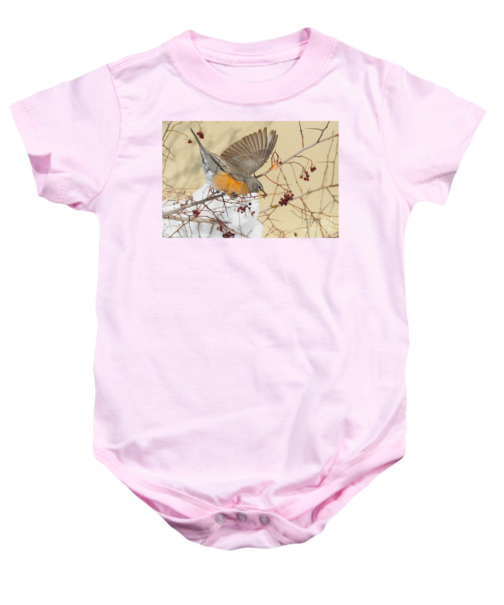 Robin Baby Onesie featuring the photograph Robin Eating Berries by Merrimon Crawford