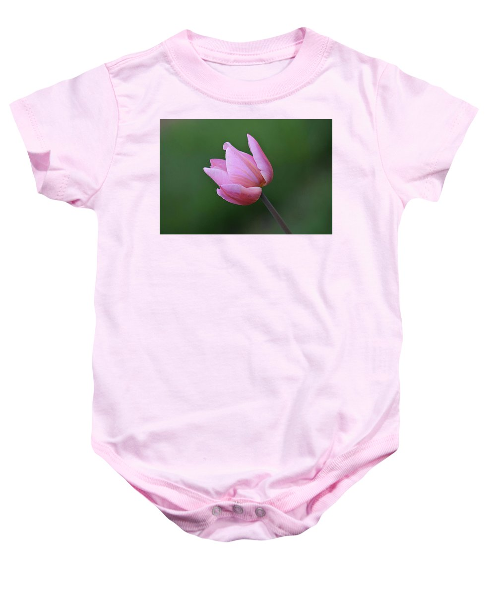 Tulip Baby Onesie featuring the photograph Soft Pink Tulip by Linda Crockett