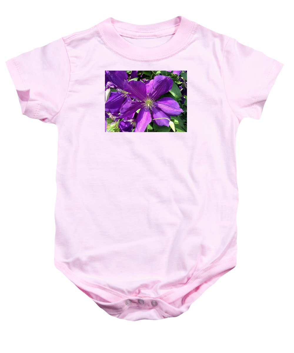 Landscape Baby Onesie featuring the photograph The Purple Sunny Day by David Drain