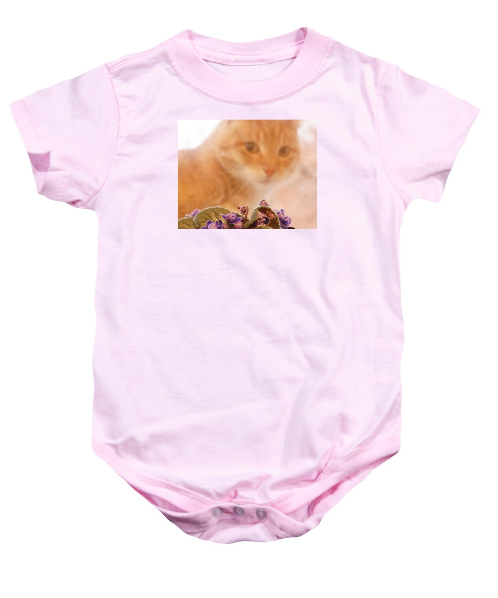 Orange Tabby Cat Baby Onesie featuring the digital art Violets with Cat by Jana Russon