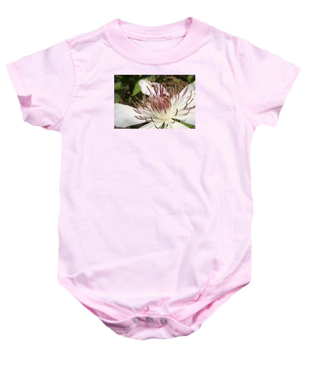 Clematis Baby Onesie featuring the photograph White Clematis Henryi by Margie Wildblood