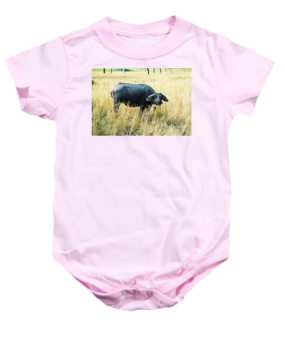 Water Buffalo Baby Onesie featuring the photograph You Lookin At Me by Mary Rogers