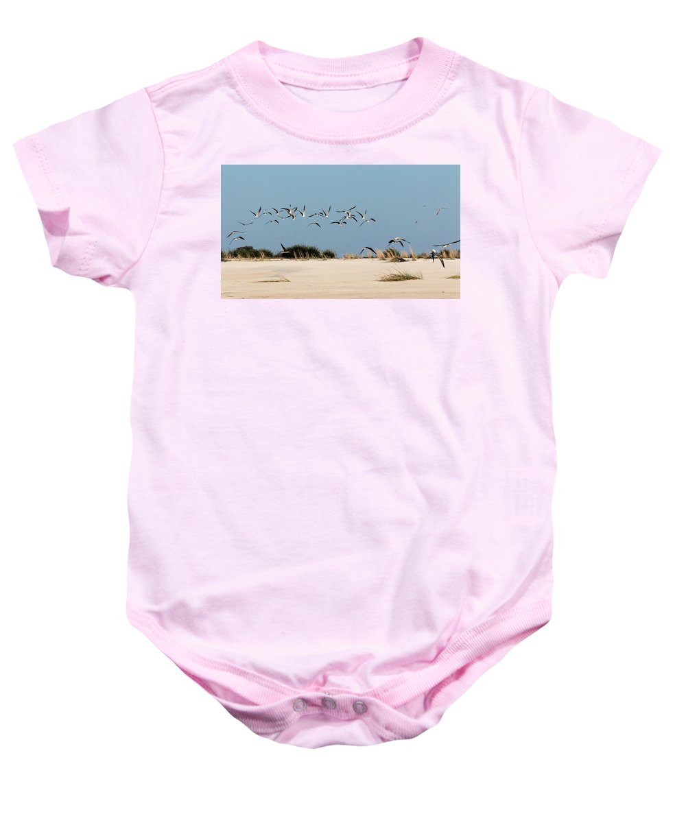 Skimmer Baby Onesie featuring the photograph African Skimmers by Claudio Maioli