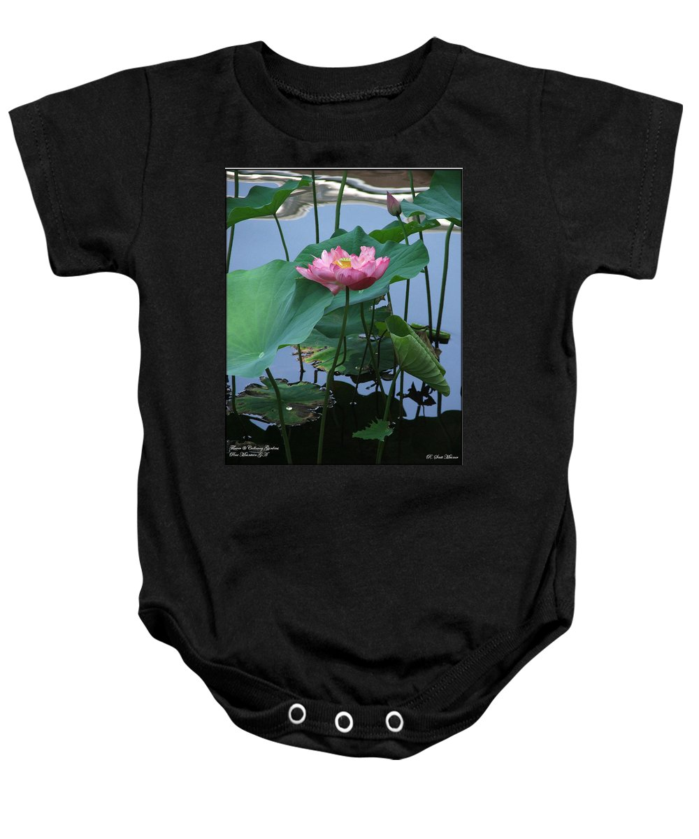 Lotus Baby Onesie featuring the photograph Lotus Flower At Calloway by Robert Meanor