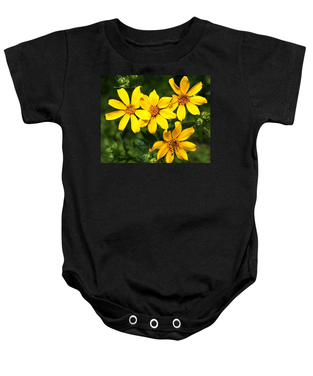 Wildflowers Baby Onesie featuring the photograph Yellow Texas Wildflowers by Terry Fleckney