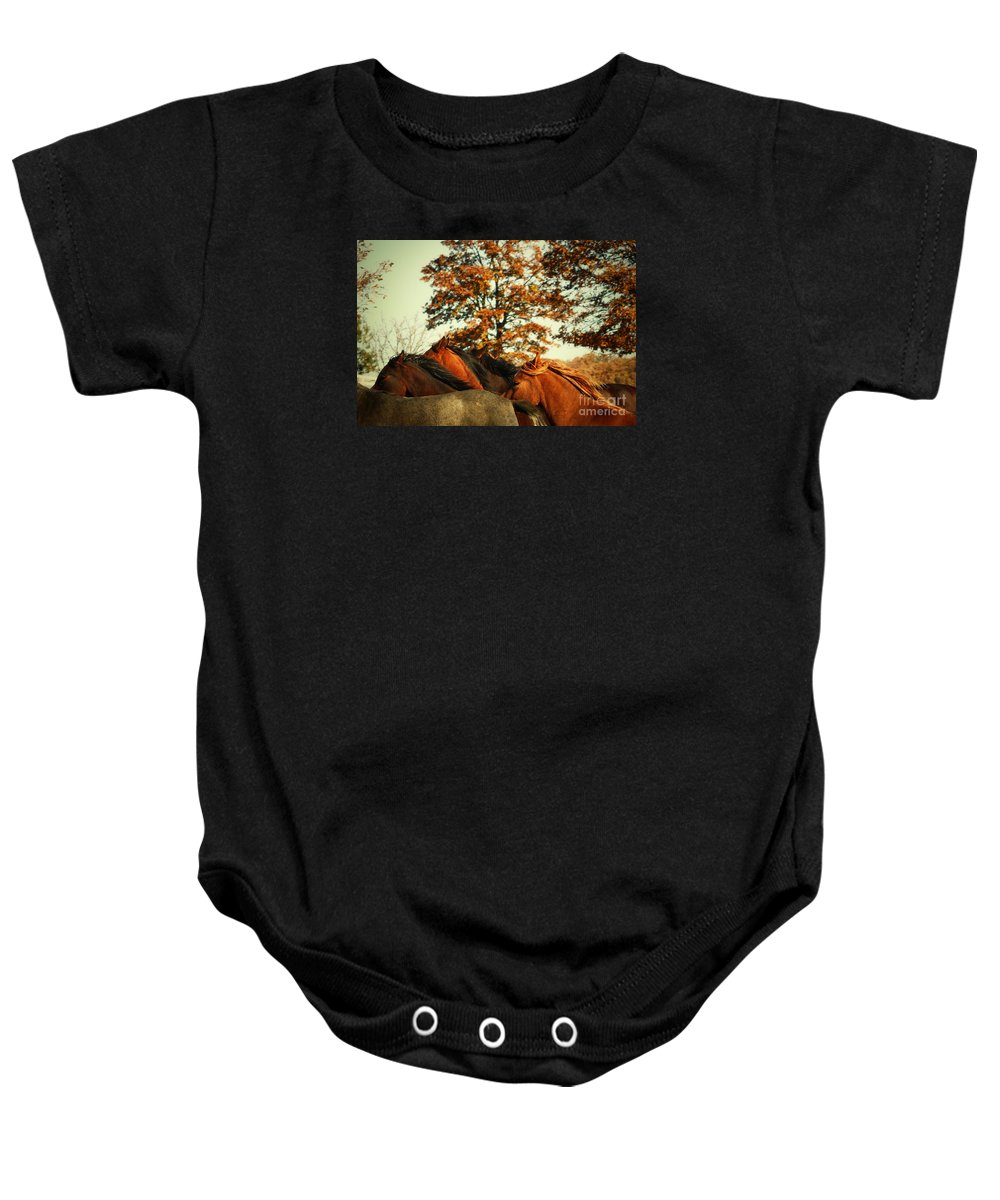 Horse Baby Onesie featuring the photograph Autumn Wild Horses by Dimitar Hristov