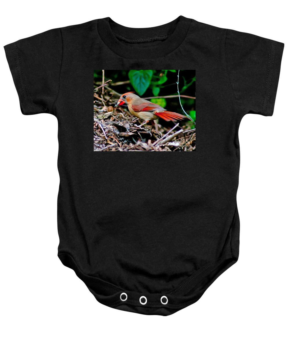 Female Baby Onesie featuring the photograph Female Cardinal by Stephen Whalen
