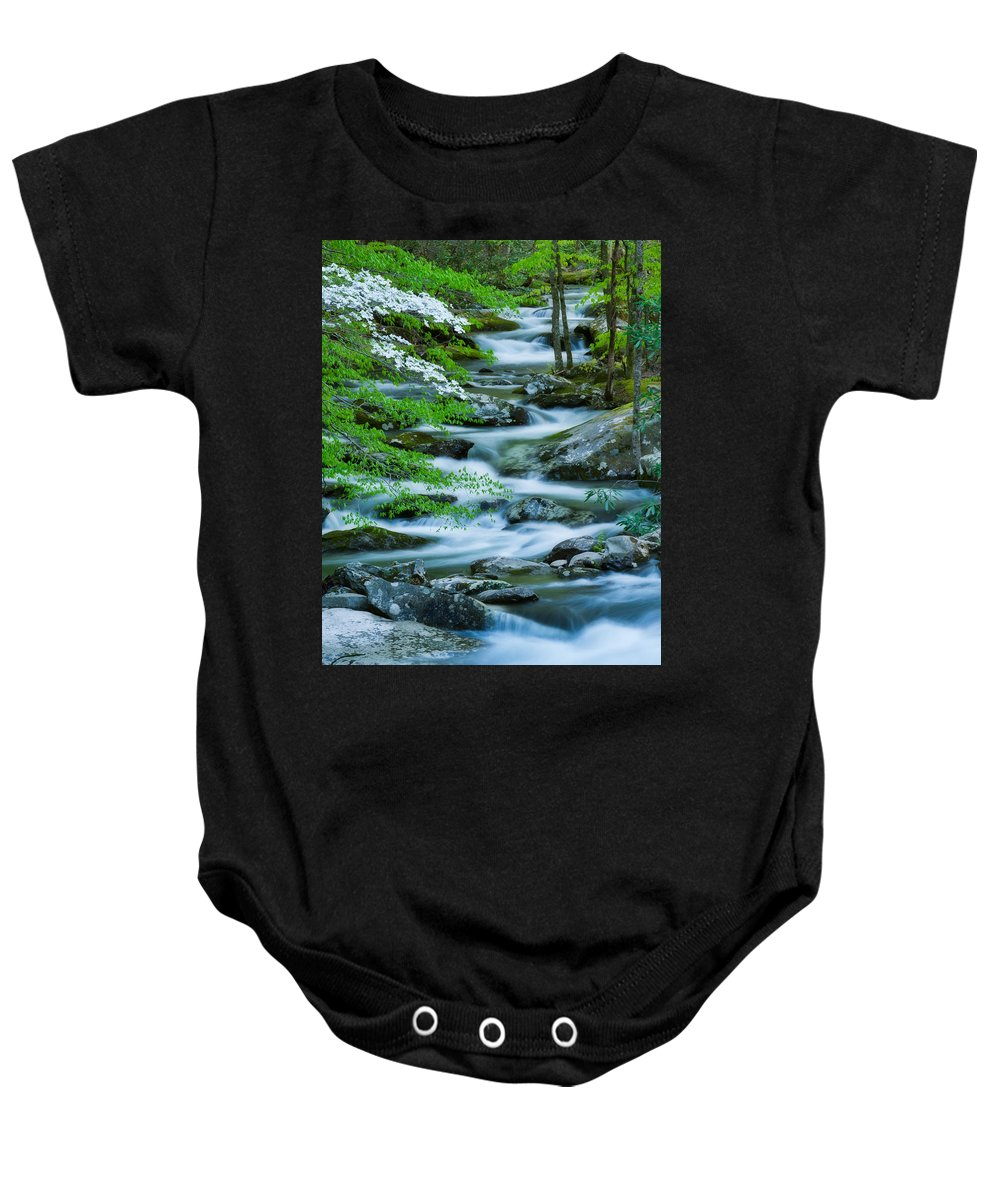 Bloom Baby Onesie featuring the photograph Flowering Dogwood On Meandering River by Michael Blanchette
