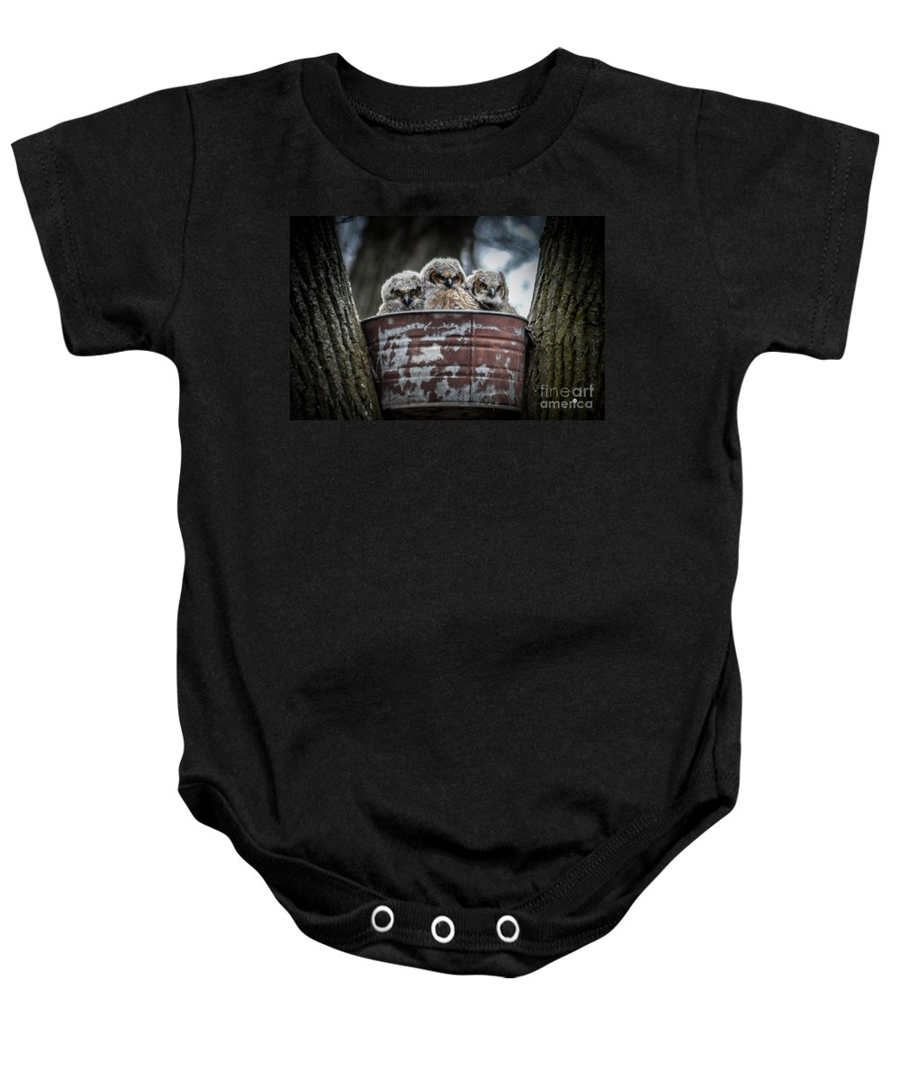 Owls Baby Onesie featuring the photograph Great Horned Owl Chicks by Ronald Grogan