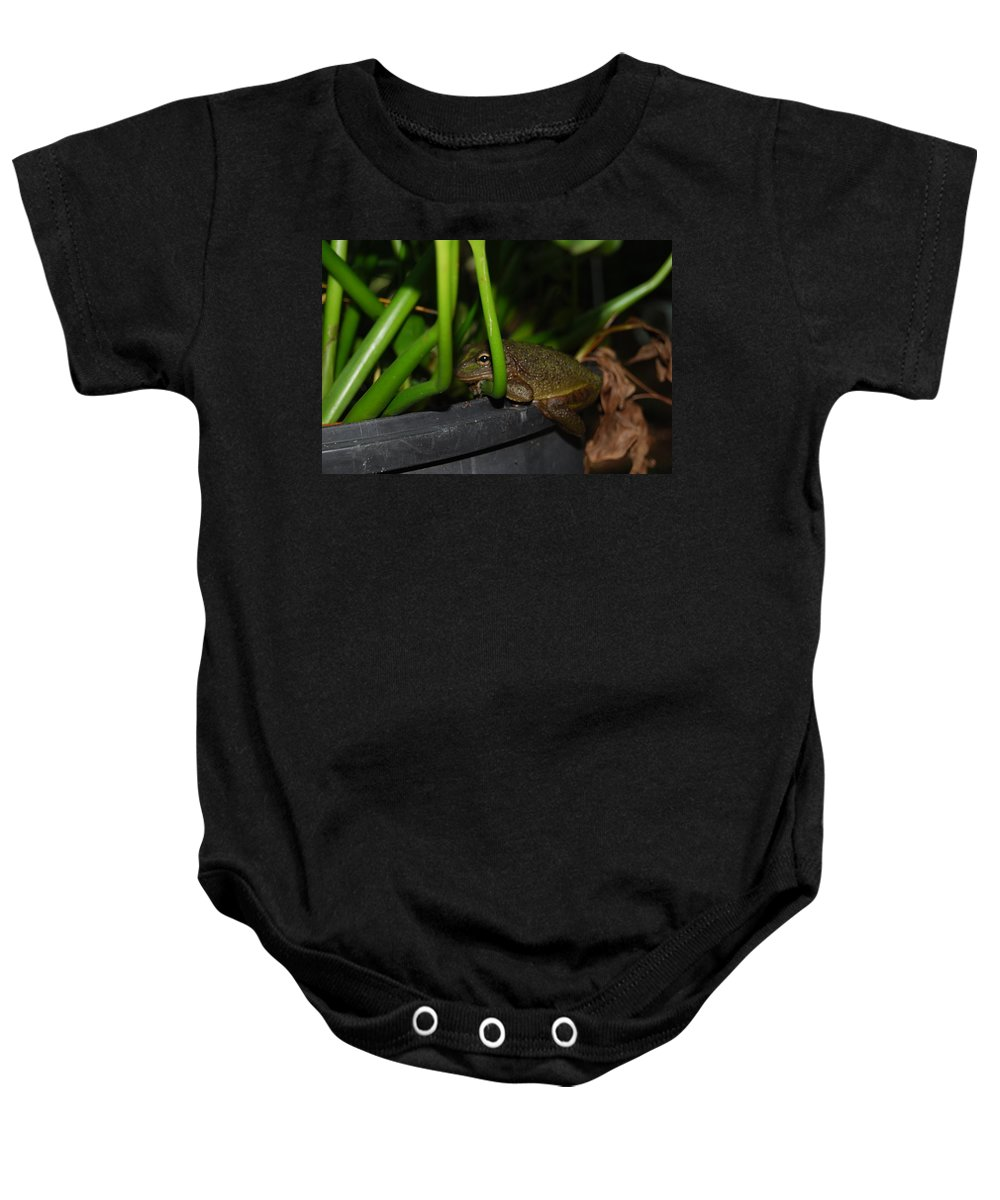 You Can't See Me Baby Onesie featuring the photograph Green Tree Frog by Robert Floyd