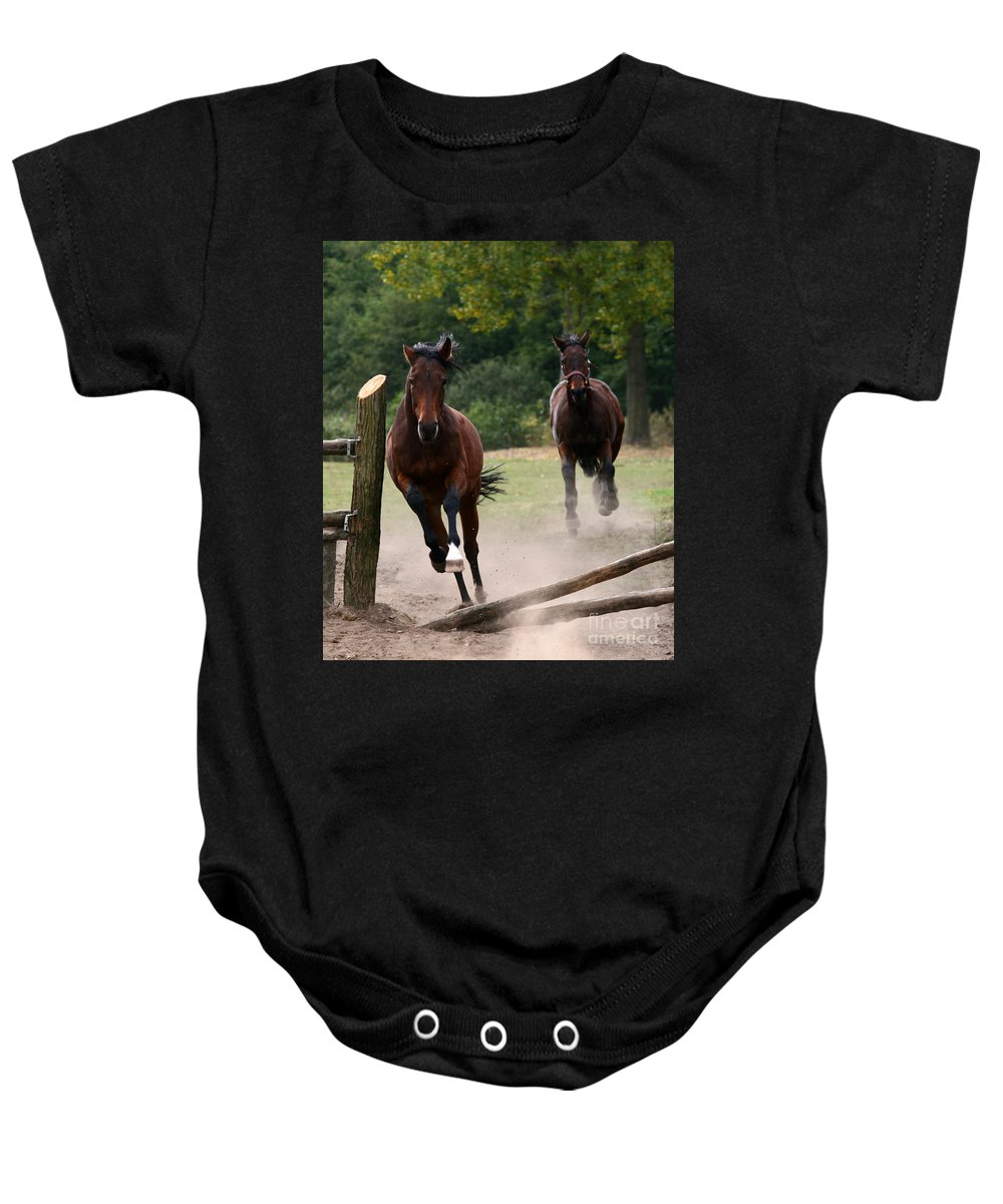Horse Baby Onesie featuring the photograph Over The Fence by Angel Ciesniarska