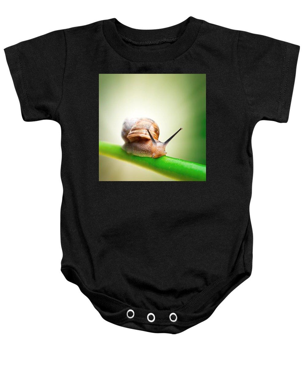 Pests Baby Onesies