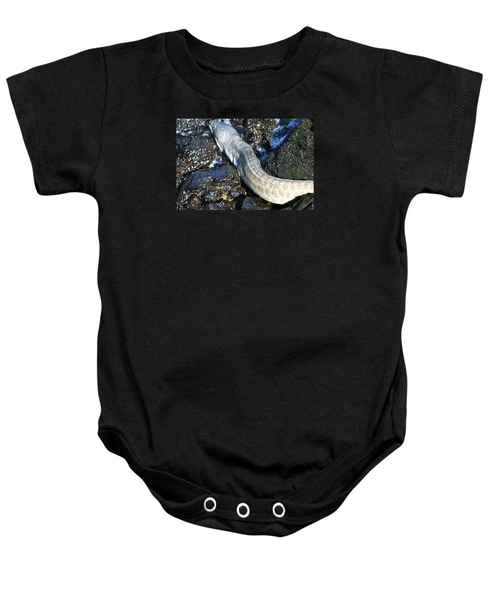 Hawaii Baby Onesie featuring the photograph White Moray Eel by Lehua Pekelo-Stearns