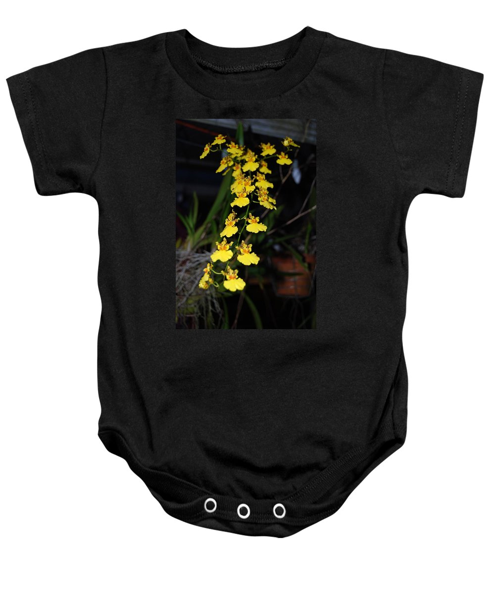 Dancing Ladies Baby Onesie featuring the photograph Orchid by Robert Floyd