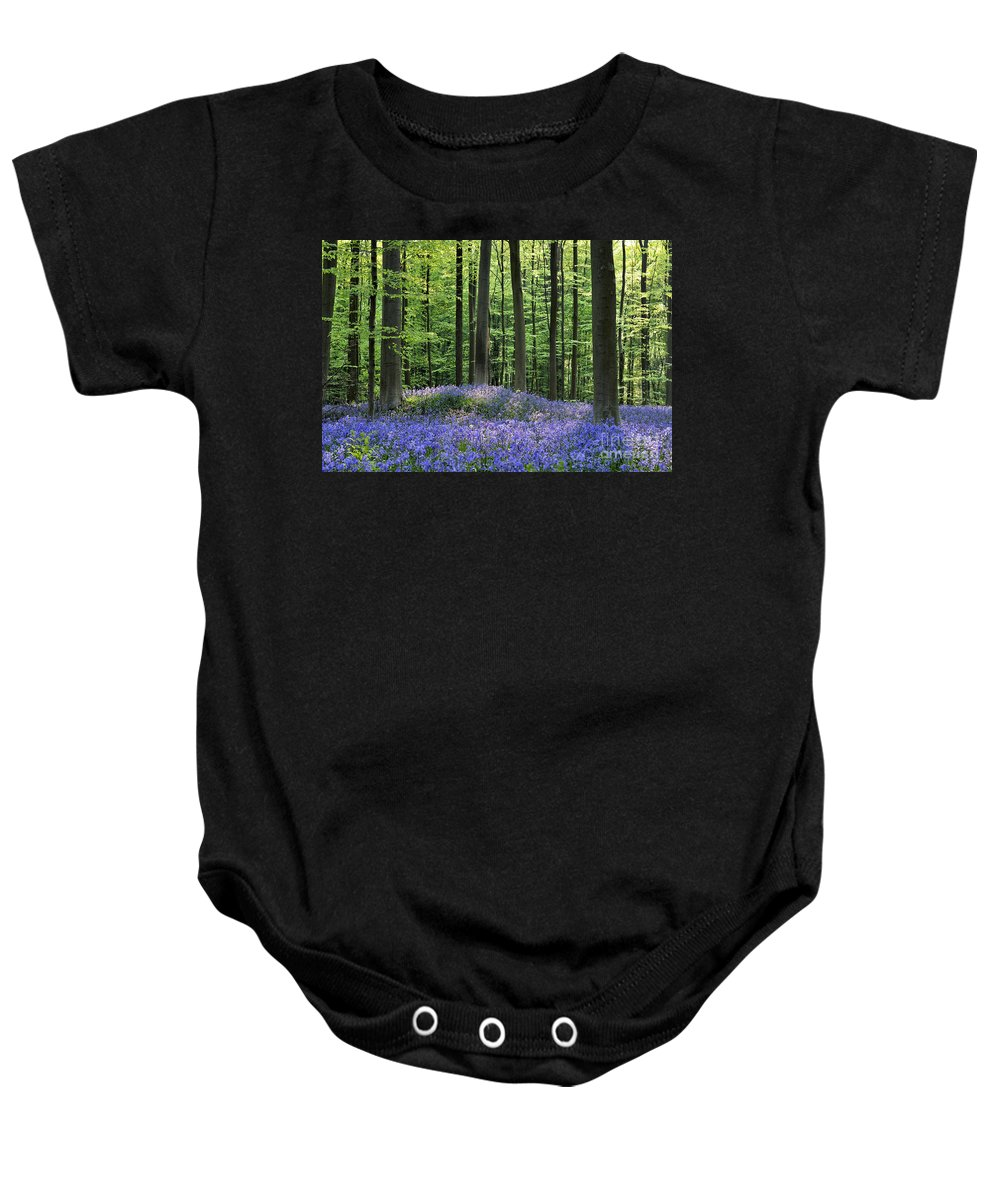 Bluebells Baby Onesie featuring the photograph 120206p191 by Arterra Picture Library