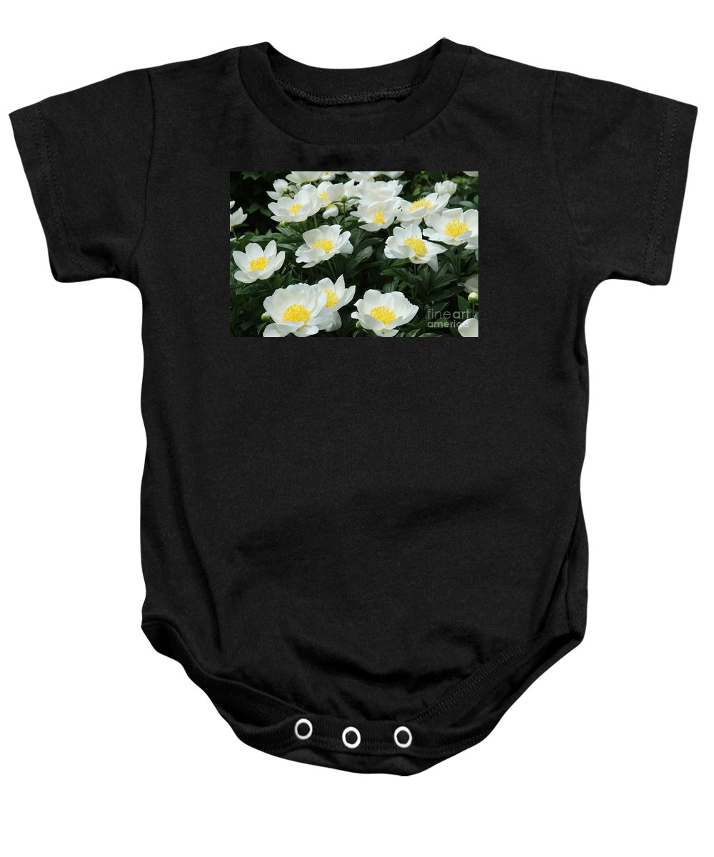 Peonies Baby Onesie featuring the photograph All Together by Christiane Schulze Art And Photography