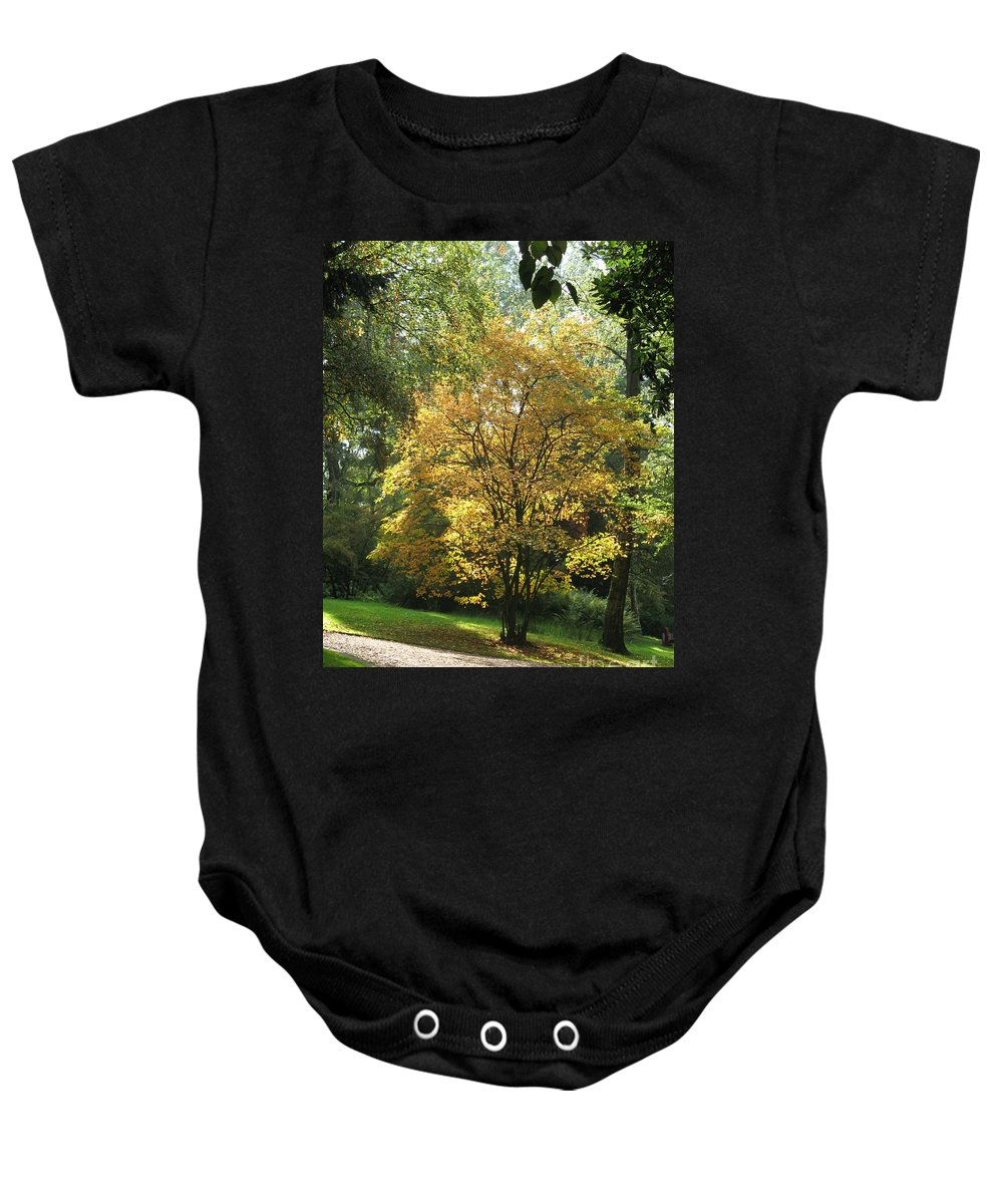 Autumn Baby Onesie featuring the photograph Autumn Tree by Christiane Schulze Art And Photography