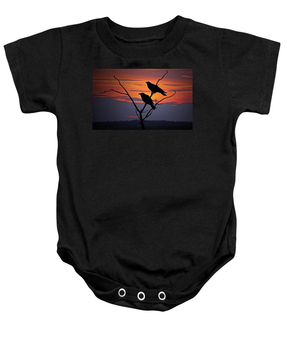 Raven Baby Onesie featuring the photograph 2 Ravens by Ron Day