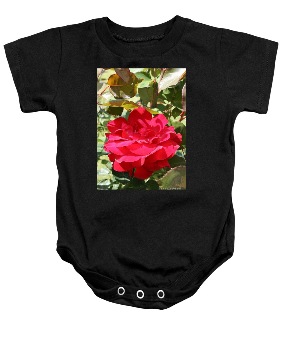 Red Rose Baby Onesie featuring the photograph Red Red Rose by Christiane Schulze Art And Photography