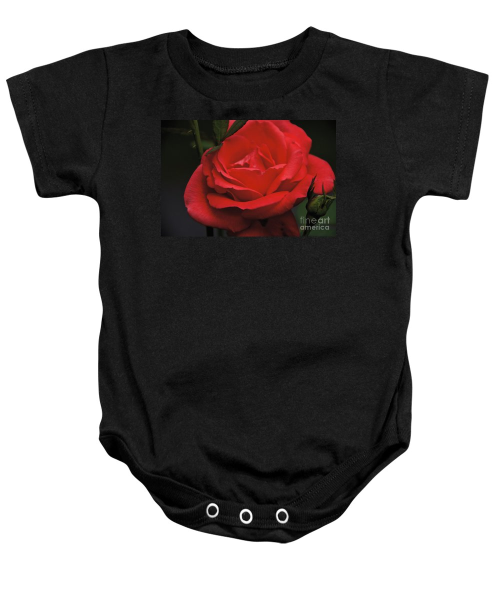 Red Rose Baby Onesie featuring the photograph Red Rose by William Norton
