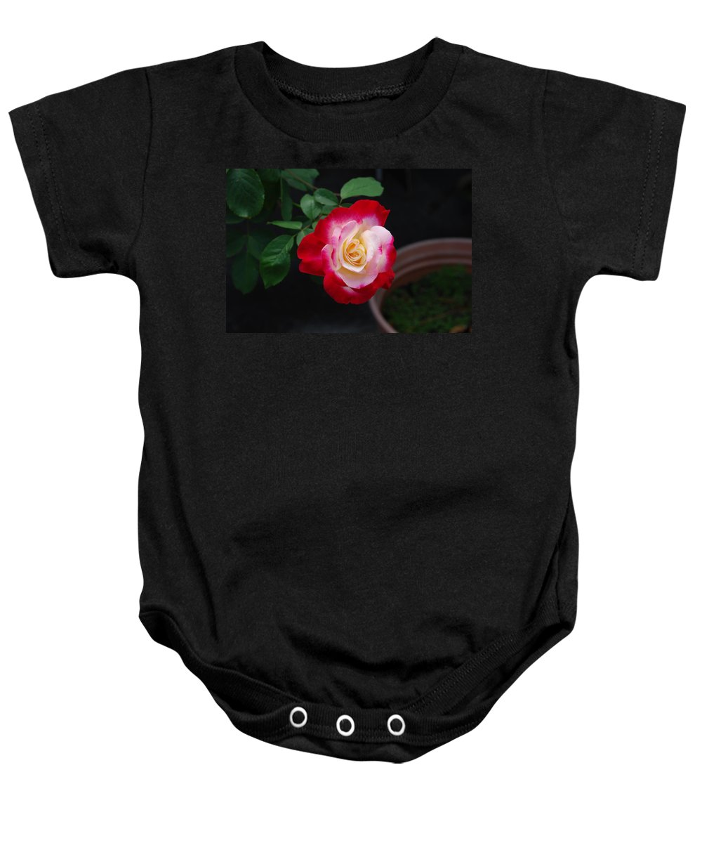 Grown In Pot Baby Onesie featuring the photograph Rose by Robert Floyd