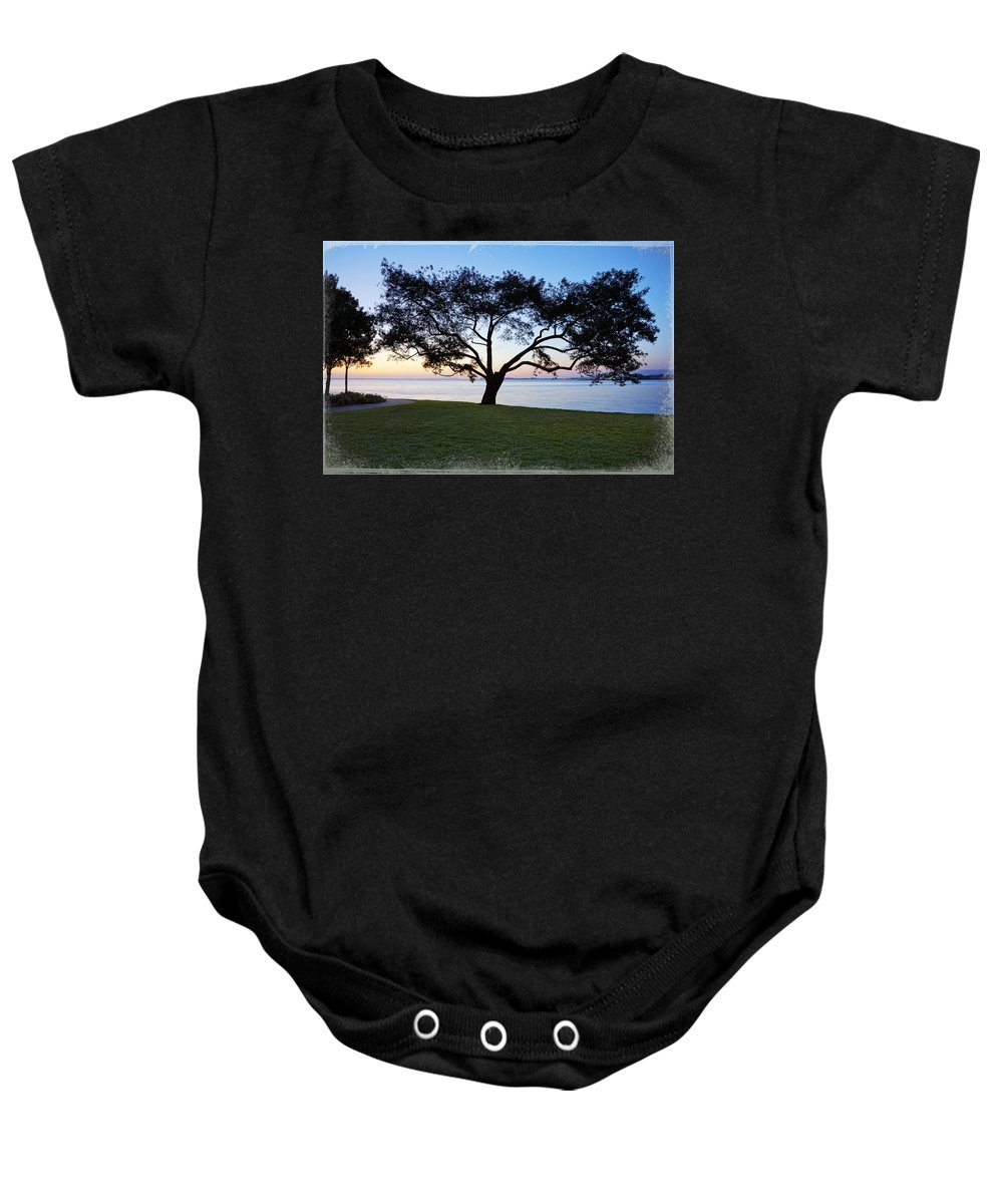 Bay Area Baby Onesie featuring the photograph Tree By The Bay by Kelley King