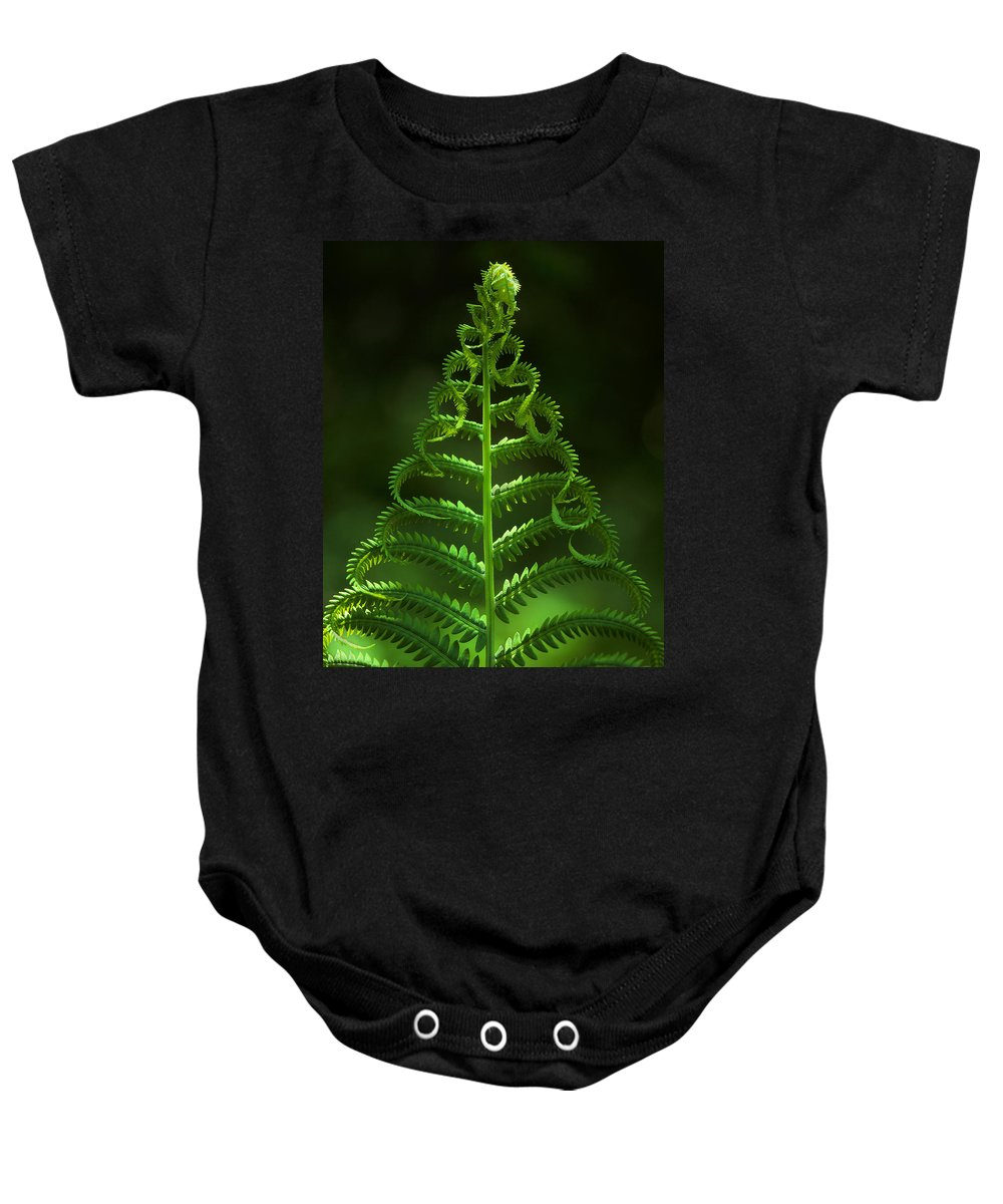 Fern Baby Onesie featuring the photograph Fern by Photophilous