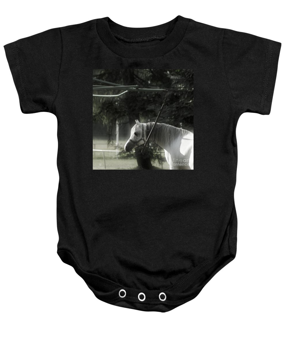 Horse Baby Onesie featuring the photograph In The Captivity by Angel Ciesniarska