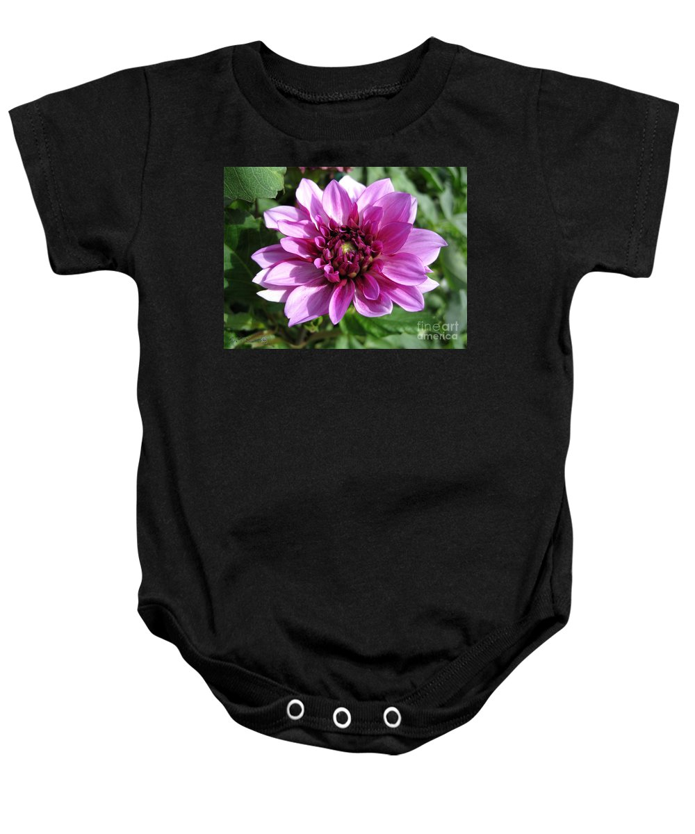 Dahlia Baby Onesie featuring the photograph Dahlia Named Blue Bell by J McCombie