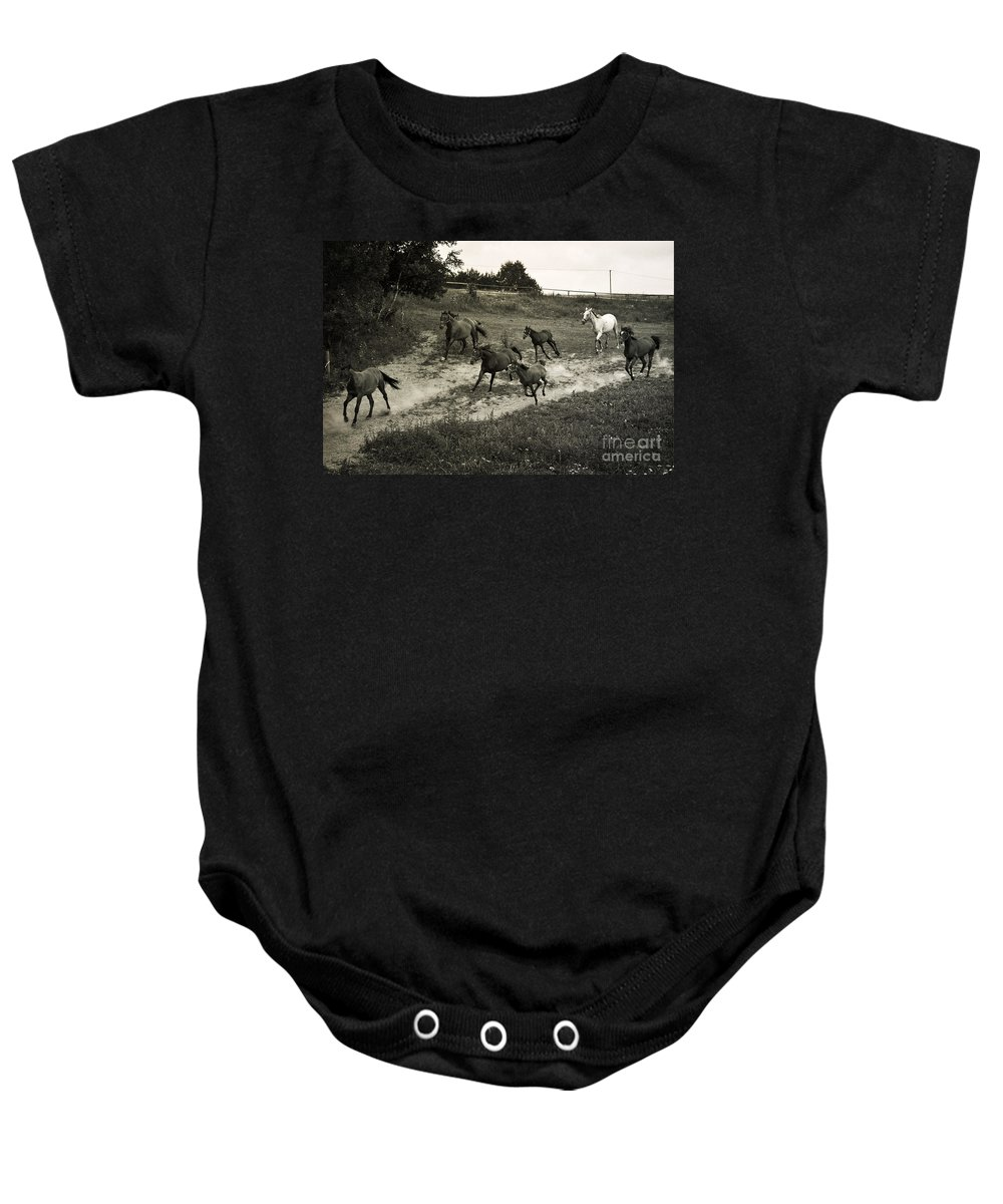 Horses Baby Onesie featuring the photograph Running Free by Angel Ciesniarska