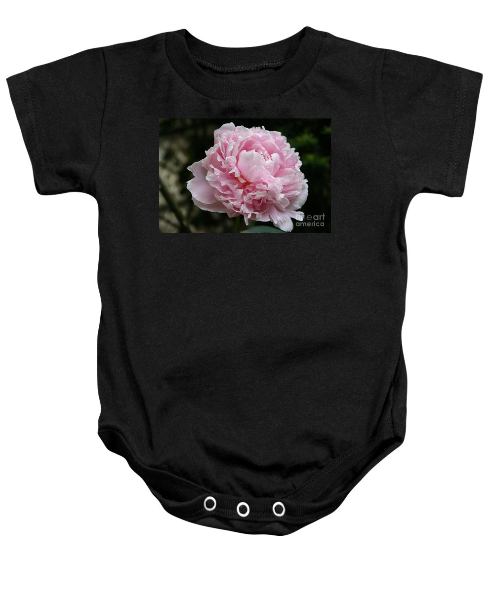 Peonies Baby Onesie featuring the photograph Pink Peony by Christiane Schulze Art And Photography