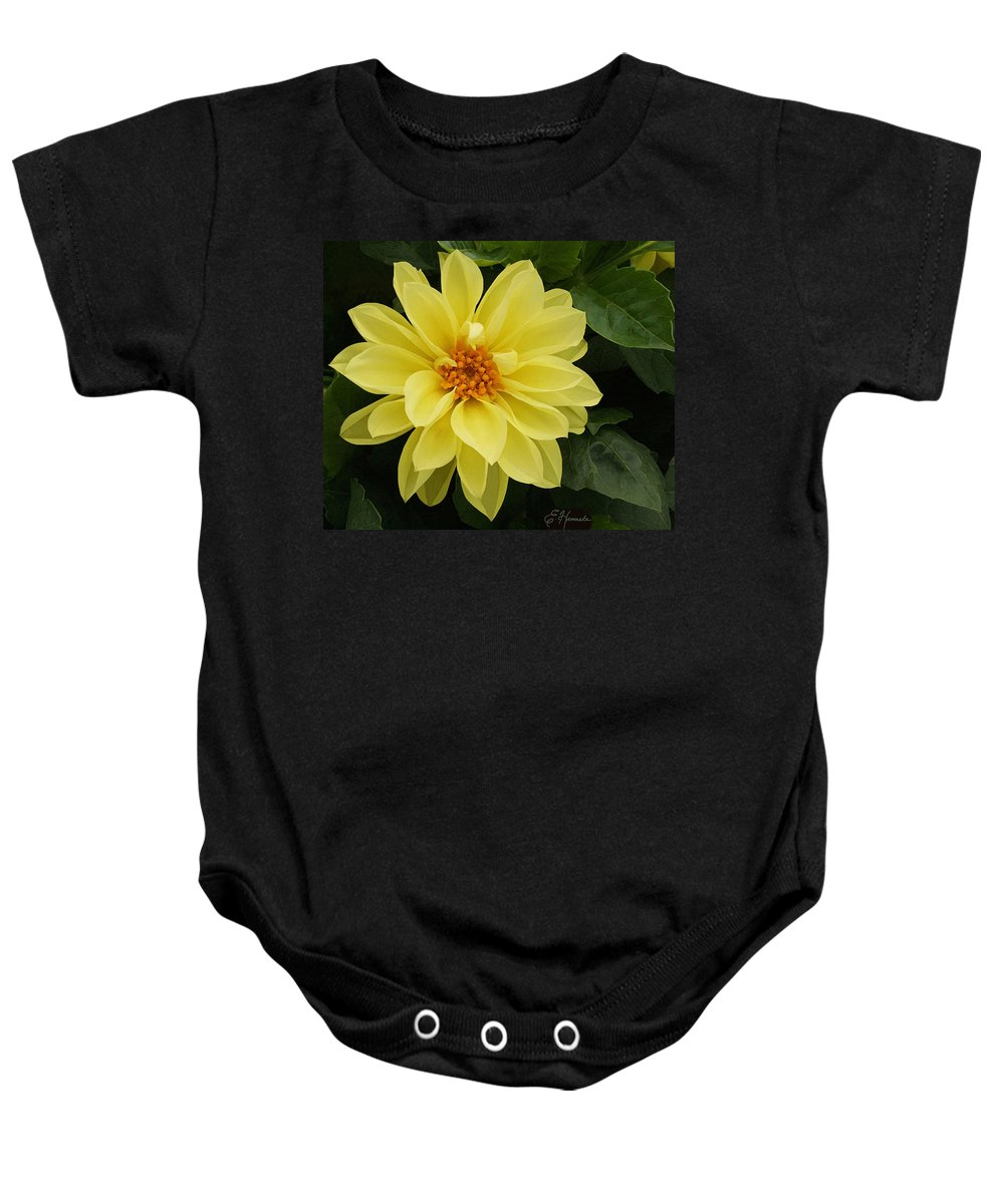 Yellow Dahlia Baby Onesie featuring the painting Yellow Dahlia by Ellen Henneke