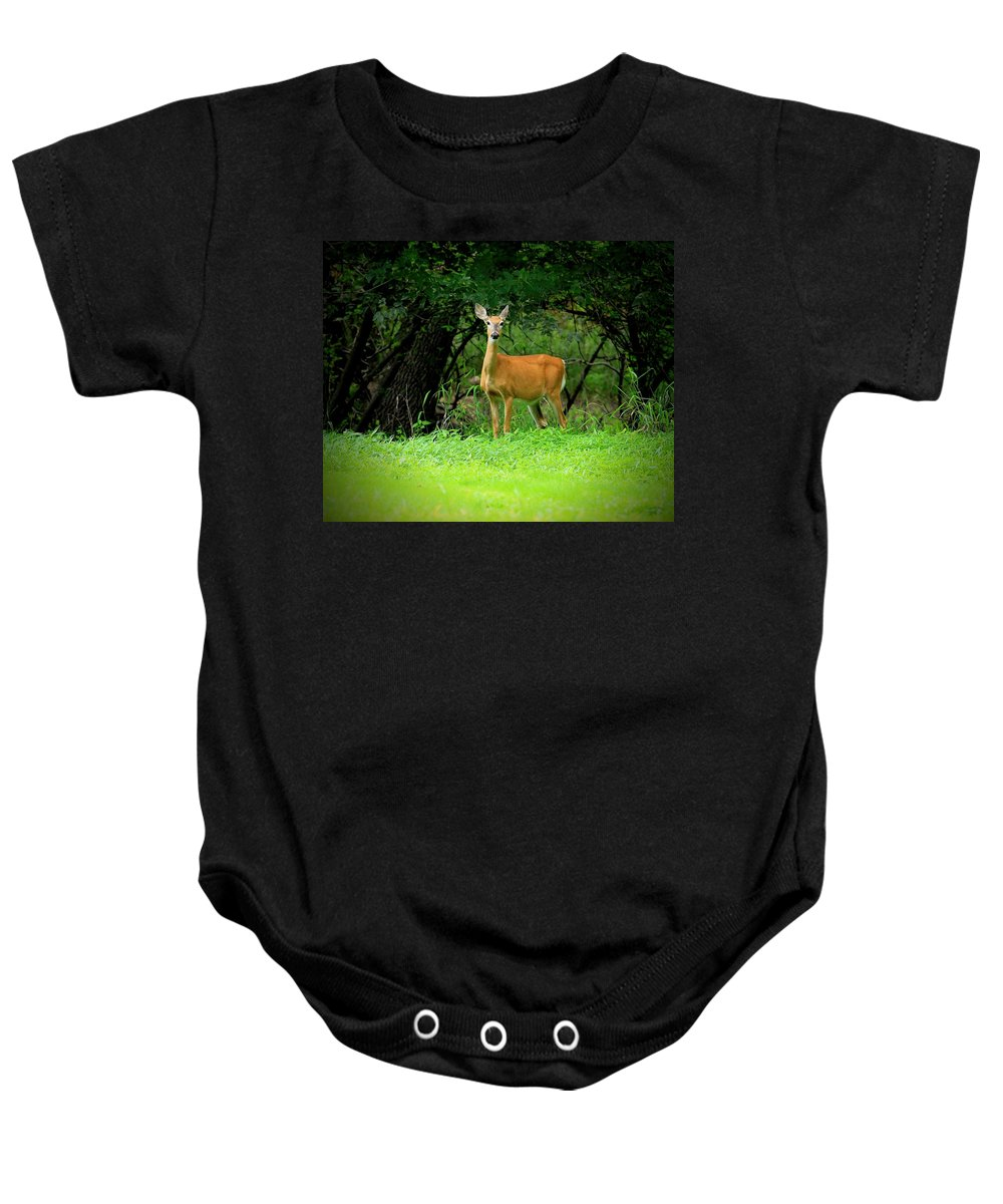 Deer Baby Onesie featuring the photograph A Closer Look by Bruce Nikle