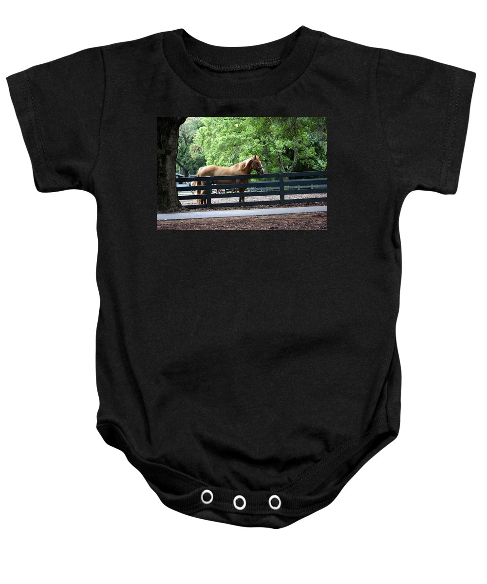 Hilton Head Island Horses Baby Onesie featuring the photograph A Very Beautiful Hilton Head Island Horse by Kim Pate