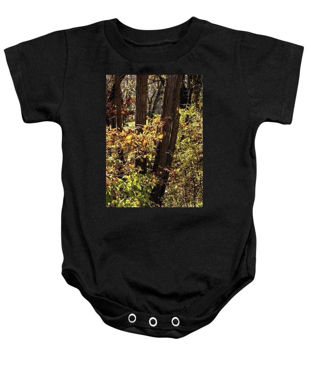 Woods Baby Onesie featuring the photograph A Walk Through The Woods - 1 by Linda Shafer