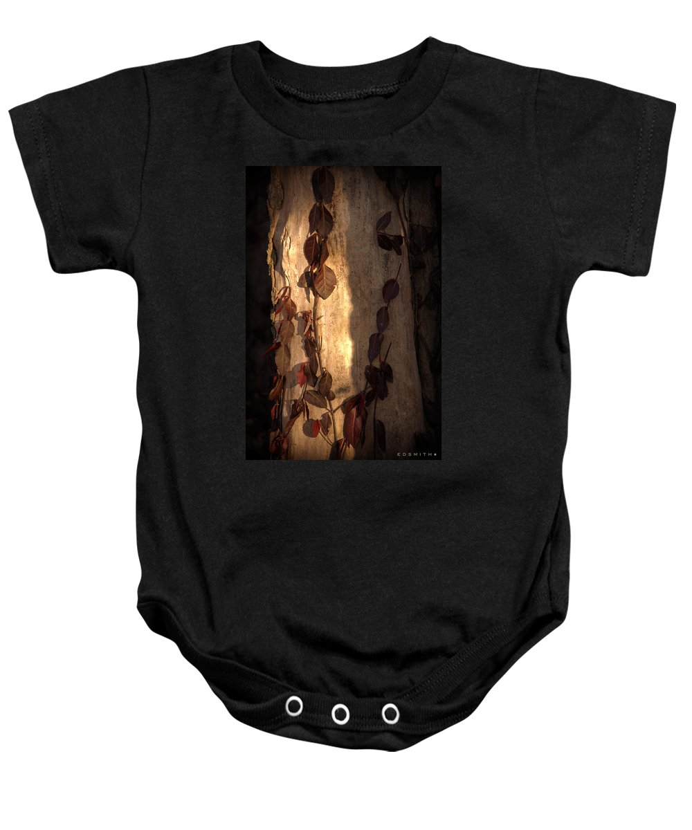 Adorned Baby Onesie featuring the photograph Adorned by Ed Smith