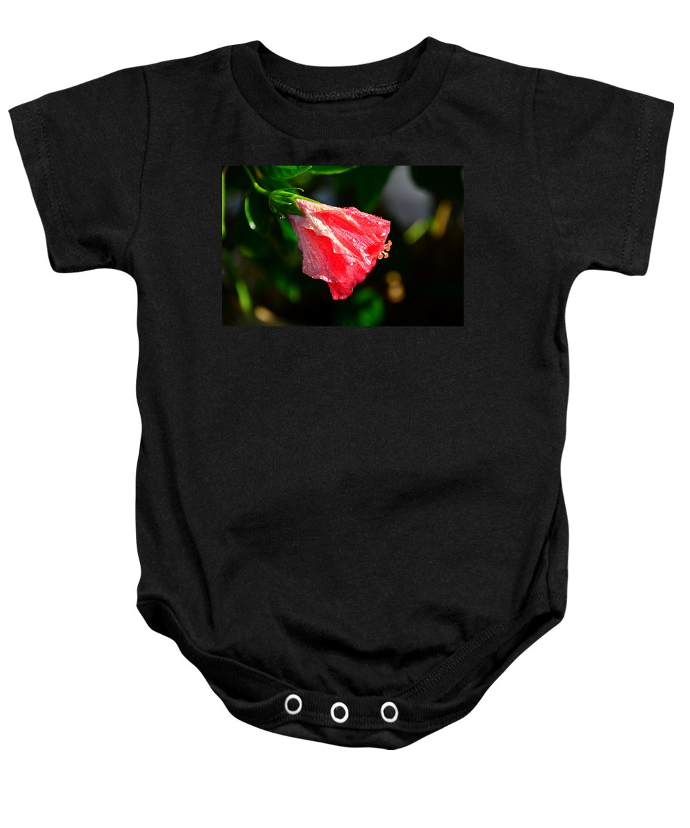 Hibiscus Baby Onesie featuring the photograph After The Rain by David Lee Thompson