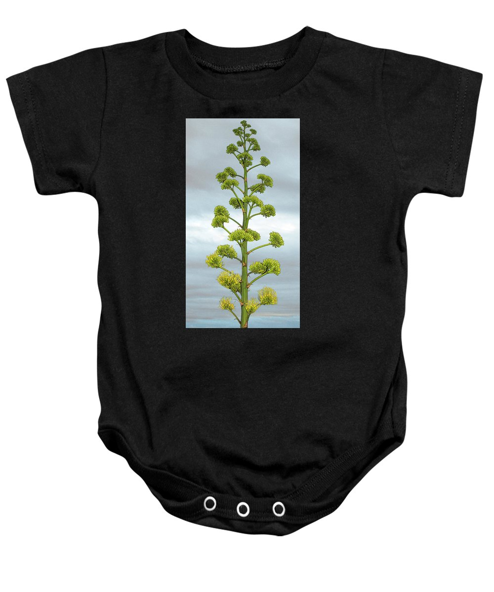 Agave Baby Onesie featuring the photograph Agave Flower Spike by Ben and Raisa Gertsberg