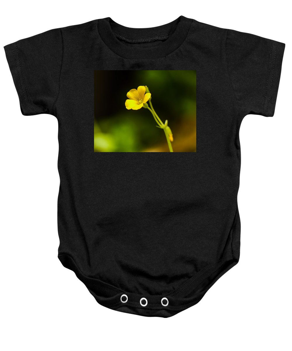 Yellow Baby Onesie featuring the photograph All Alone by Ken Kobe