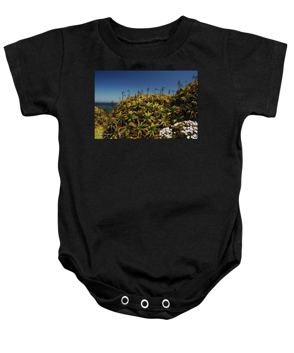 Aloe Baby Onesie featuring the photograph Aloe Is Anyone There by Donna Blackhall