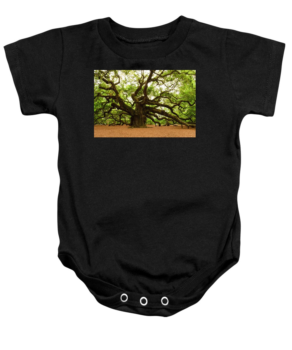 Tree Baby Onesie featuring the photograph Angel Oak Tree 2009 by Louis Dallara